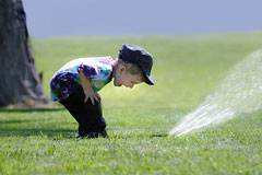 lawn sprinkler in use